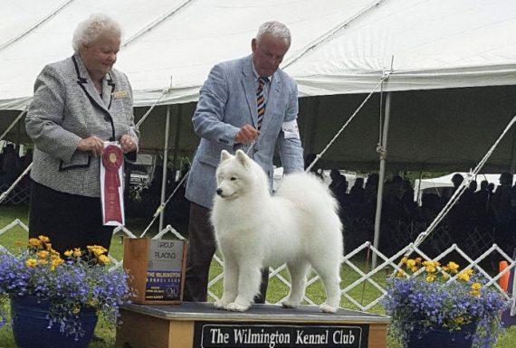 Wilmington Kennel Club USA